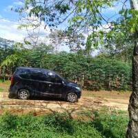 7.b. BANK BTPN SMBC LELANG  Sebidang tanah sesuai SHM No. 4395 seluas 500 m2 Desa Wirotho Agung Kec. Rimbo Bujang